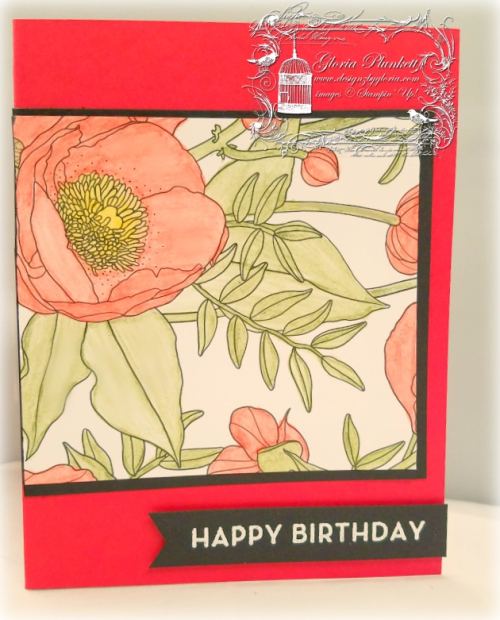 Inside The Lines designer series paper watercolor pencils big on birthday Occasions Sale-a-bration 2017