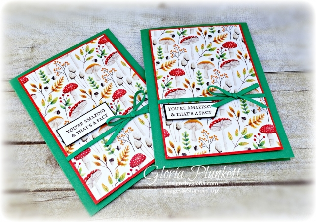 Strong & beautiful stamp set Painted seasons designer series paper stampin' up! demonstrator how to diy handmade  homemade  rubber stamping  crafts