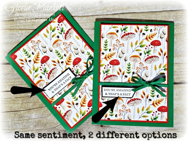 Strong & beautiful stamp set Painted seasons designer series paper stampin' up! demonstrator how to diy handmade  homemade  rubber stamping  crafts cardmaking