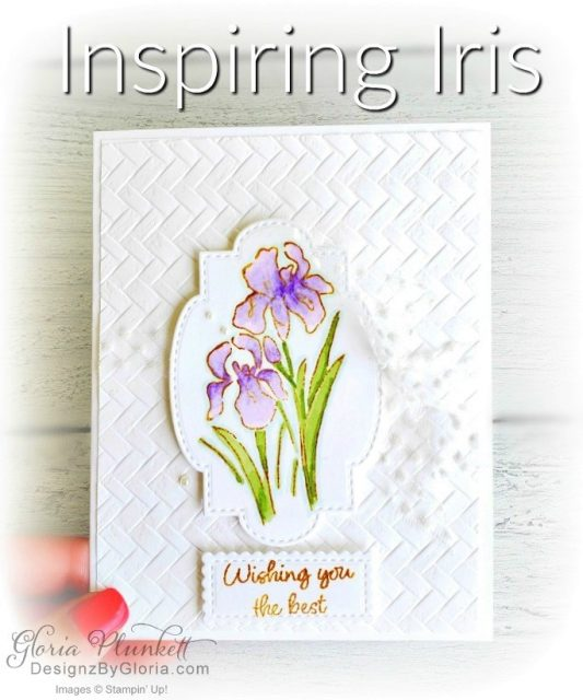 "Inspiring iris stamp set, coasting weave 3d embossing folder, gorgeous grape classic ink, pear pizzazz classic ink, pleased as punch designer series paper, granny apple green cardstock, basic black cardstock, gorgeous grape cardstock, rococo rose light and dark stampin' blends, granny apple green dark and light stampin' blends, watercolor pencils, blender pen, petal pink cardstock, stitched so sweetly dies, rectangle stitched framelits, 5/8"" whisper white flax ribbon, real red rhinestones, silicone craft mat, white embossing powder, versamark ink pad, heat tool, watercolor paper, crumb cake cardstock, tear & tape, 1"" circle punch, simply scored, paper trimmer, Paper Snips, Take Your Pick Tool, Stampin' Sponges, White Chalk Marker, Stitched Rectangle Dies, sip & celebrate dies, Grid Paper, stampin sponge, perfectly plaid Stamp set, truck ride dies, shimmery crystal effects, braided linen ribbon, to every season stamp set, every season punch, gold foil paper, shaded spruce cardstock, cherry cobbler cardstock, wrapped in plaid 6 x 6 designer series paper, thick whisper cardstock, silicone craft mat, grid paper, polka dot tulle ribbon, come to gather designer series paper, splitcoaststampers, come painters, blender pens, clear wink of stella, stampin' trimmer, very vanilla cardstock, sponge daubers, dimensionals, paper snips, multipurpose liquid glue take your pick, SNAIL adhesive, stampin' up! Demonstrator, how to, diy handmade, homemade, rubber stamping, greeting card, crafts cardmaking to gathered ribbon combo pack, Tags & More Accessory kit, black stampin dimensionals, detailed trio punch, basic black cardstock, old olive classic ink, memento tuxedo black ink, black stazon ink, thick whisper white cardstock, whisper white cardstock, stamparatus, aqua painters, simply shammy shammie"